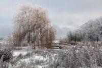 Schweriner See im Winter