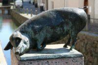 Schwein an der Brücke in Wismar
